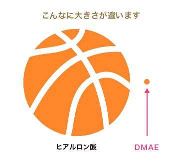 DMAE原末