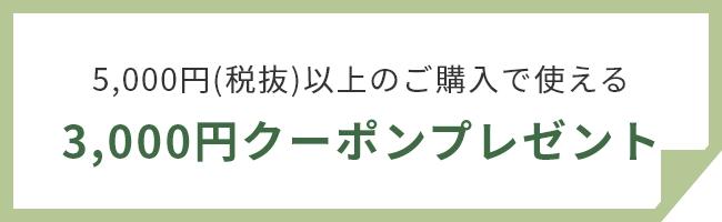 3000円クーポンプレゼント